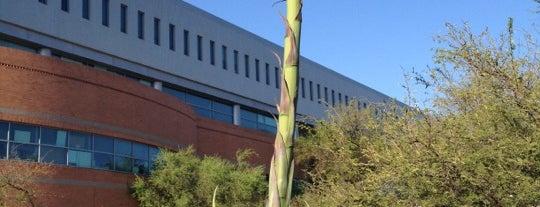 McClelland Hall (Eller College of Management) is one of Tucson Arizona.