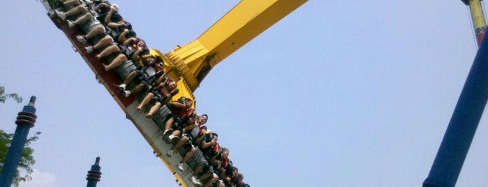 Kings Island is one of The Most Popular Theme Parks in U.S..