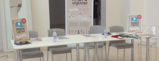 Museo Pino Pascali is one of #invasionidigitali 2013.
