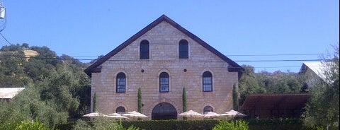 Regusci Winery is one of NVFF | Wine Partners.