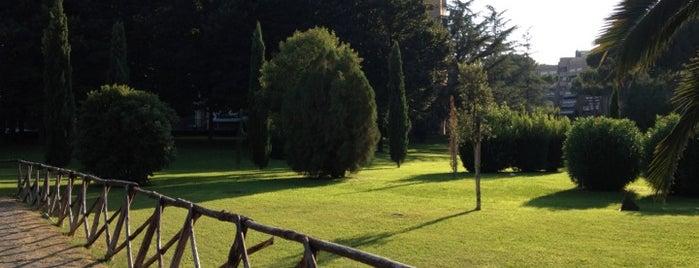 Fonte Meravigliosa is one of Locais curtidos por Gabriele.