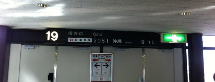 Gate 19 is one of 大阪国際空港(伊丹空港) 搭乗口 ITM gate.