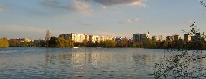 Parcul Alexandru Ioan Cuza (IOR) is one of P.