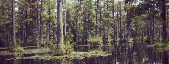 Cypress Gardens is one of Charleston.