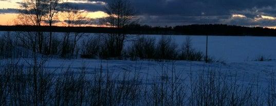 Озеро Победное is one of Lugares favoritos de Алёна.