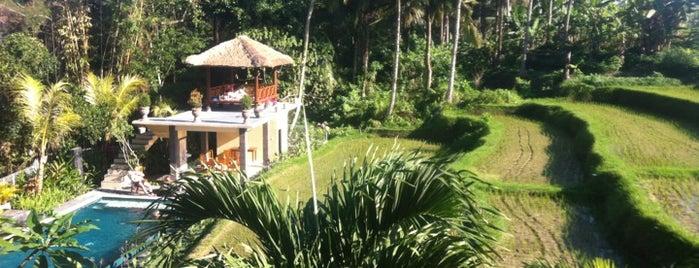 Biyukukung Resort & Spa is one of Ubud.