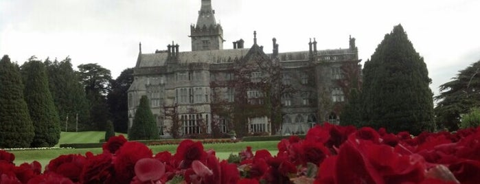 Adare Manor Hotel is one of In Dublin's Fair City (& Beyond).