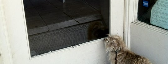 Cheeko B is one of San Francisco Trip.