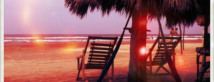 Playa Tuxpan is one of Lieux qui ont plu à Ana.