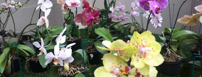 Orquidario is one of Mónicaさんのお気に入りスポット.