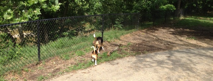 Shirlington Dog Park is one of Locais curtidos por Anna.