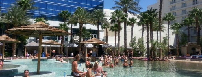 VIP Cabanas - Hard Rock Hotel Pools is one of Vegas Bound Bitches 13'.