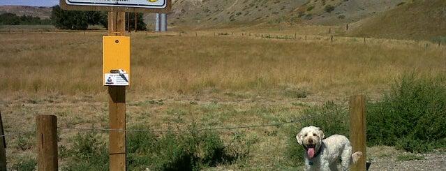 Peenaquim Dog Park is one of Dog Parks.