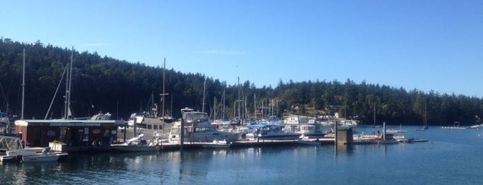 Shearwater Kayak Tours is one of I've Been Here!.