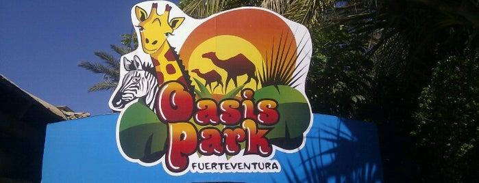 Oasis Park Fuerteventura is one of Fuerteventura.