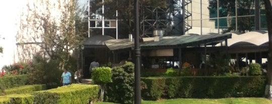 AAPA UNAM is one of Lieux sauvegardés par Elias.