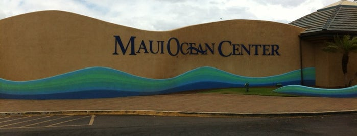 Maui Ocean Center, The Hawaiian Aquarium is one of Gespeicherte Orte von Ashley.