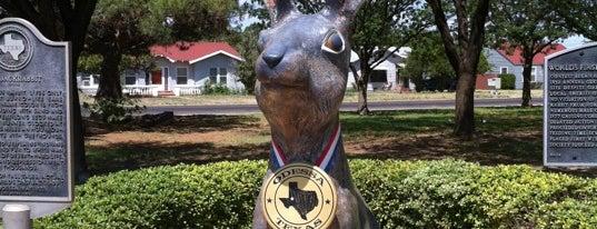 Jack Ben Rabbit is one of West Texas: Midland to El Paso.