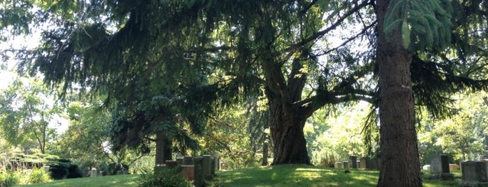 Mount Pleasant Cemetery is one of Toronto.