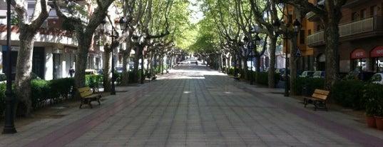 Passeig de l'Estació is one of Festa de la #calçotada de Valls.