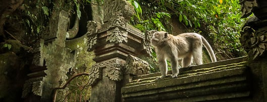 Sacred Monkey Forest Sanctuary is one of Viaje a Bali.
