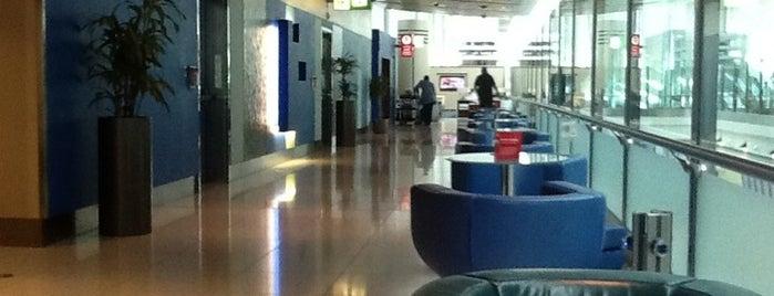 Dubai International Airport (DXB) is one of สนามบินนานาชาติ (1).