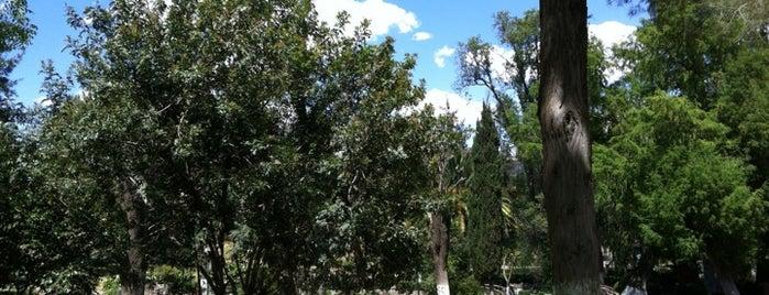 Parque Sierra de Alica is one of Posti che sono piaciuti a Fabricio.