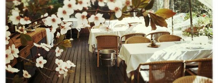 La Balsa Restaurant is one of Terrazas Barcelona.