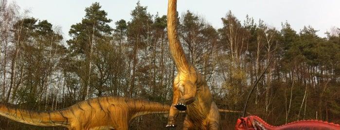 Dinosaurierpark Münchehagen is one of Ausflugsziele rund ums Steinhuder Meer.