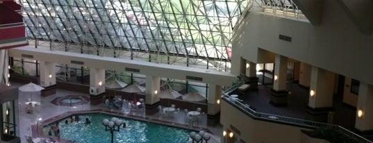Crowne Plaza St. Louis Airport is one of Orte, die Susan gefallen.