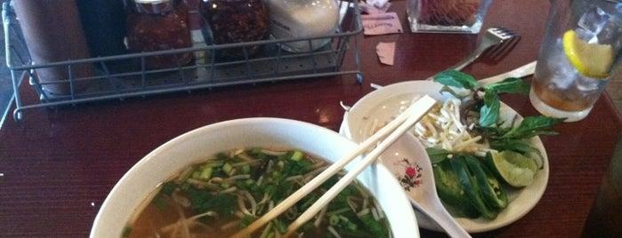 Bamboo Asian Noodles & Tapas Bar is one of Posti salvati di Derek.