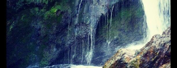 Powerscourt Waterfall is one of Ireland.
