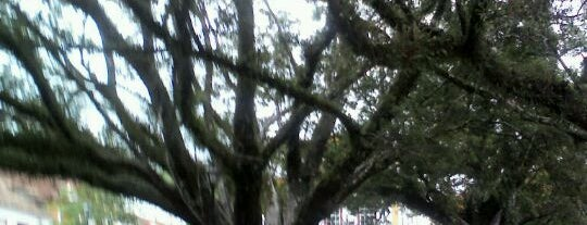Praça Tiradentes is one of Dadeさんのお気に入りスポット.