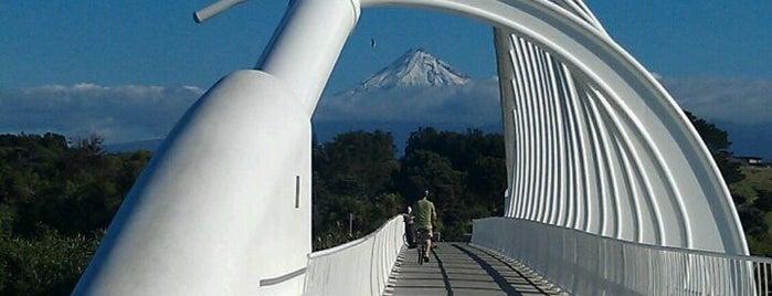 Te Rewa Rewa Bridge is one of Orte, die Marc gefallen.