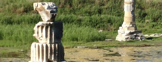 Artemis Tapınağı is one of People, Places, and Things.