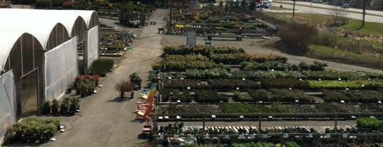 Meadows Farms Nurseries & Landscaping is one of Locais curtidos por Ganesh.