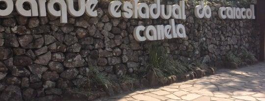Parque Estadual do Caracol is one of LUGARES... Rio Grande do Sul/BRASIL.