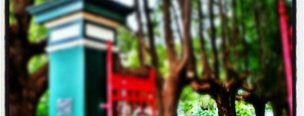 Petersham Park is one of jaddanさんのお気に入りスポット.