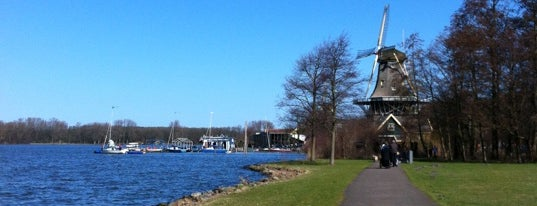 Kralingse Bos is one of NED Amsterdam.