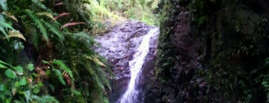 Maunawili Falls Trail is one of Local's Guide to Hawaii.