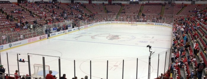 Joe Louis Arena is one of NHL Arenas 2013.