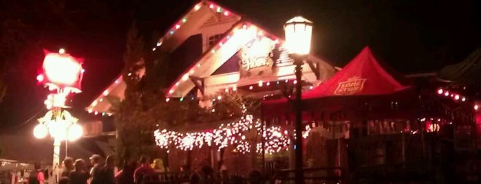 Spider House Patio Bar & Cafe is one of Coffee Haunts.