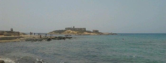 Isola delle Correnti is one of virgo.