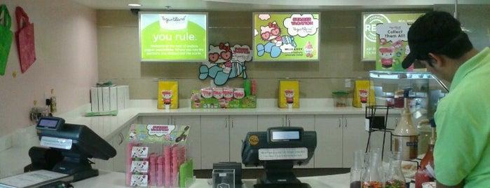 Yogurtland is one of SD 2015.
