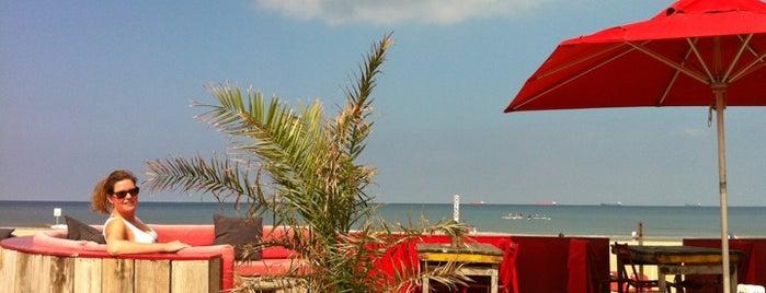 Beachclub Culpepper is one of Den Haag Scheveningen.