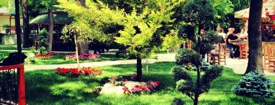 TBMM Bahçe Lokanta is one of Dilekさんのお気に入りスポット.
