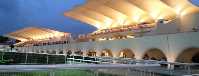 Hipódromo de la Zarzuela is one of Experiencias.