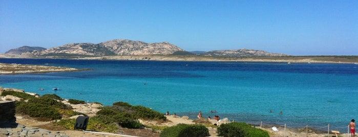 Spiaggia della Pelosa is one of Die schönsten Strände Europas.