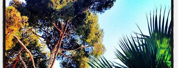 The Garden is one of Terrazas Barcelona.