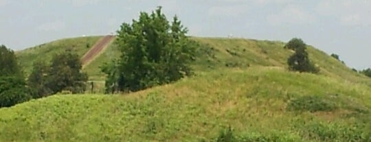 Cahokia Mounds State Historic Site is one of Historic America.